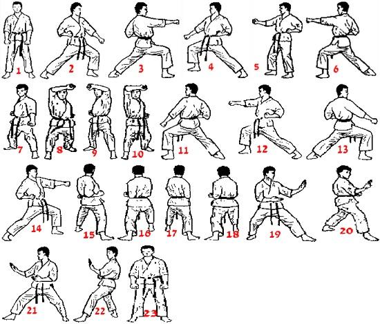 Как научиться каратэ самостоятельно дома с нуля