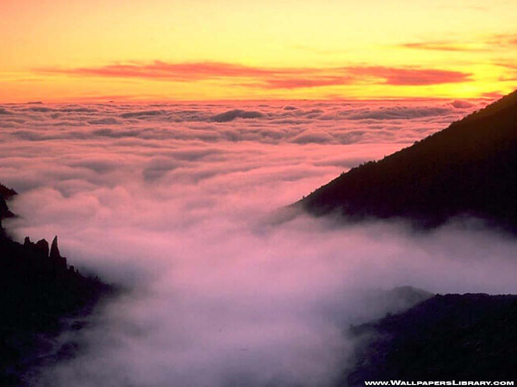 Aida Shaw: Fog Background