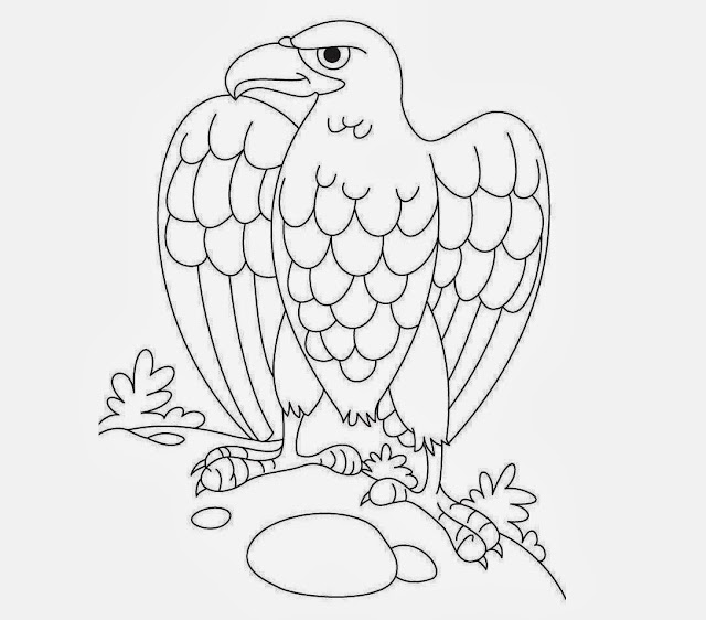 Eagle Coloring Drawing Free wallpaper