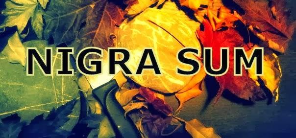 http://nigrasum2.blogspot.com.es/2014/02/el-cami-de-la-virtut-per-ferran.html