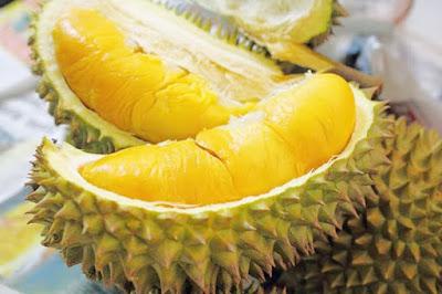 5 bí mật về trái sầu riêng