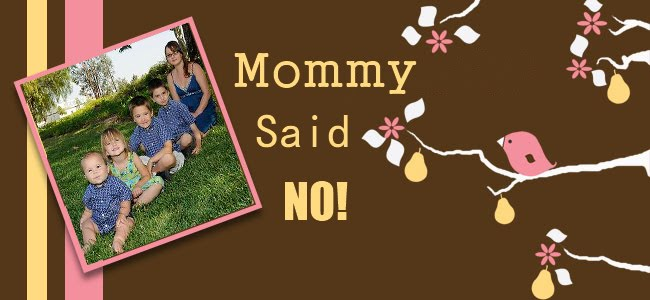 Mommy Said No