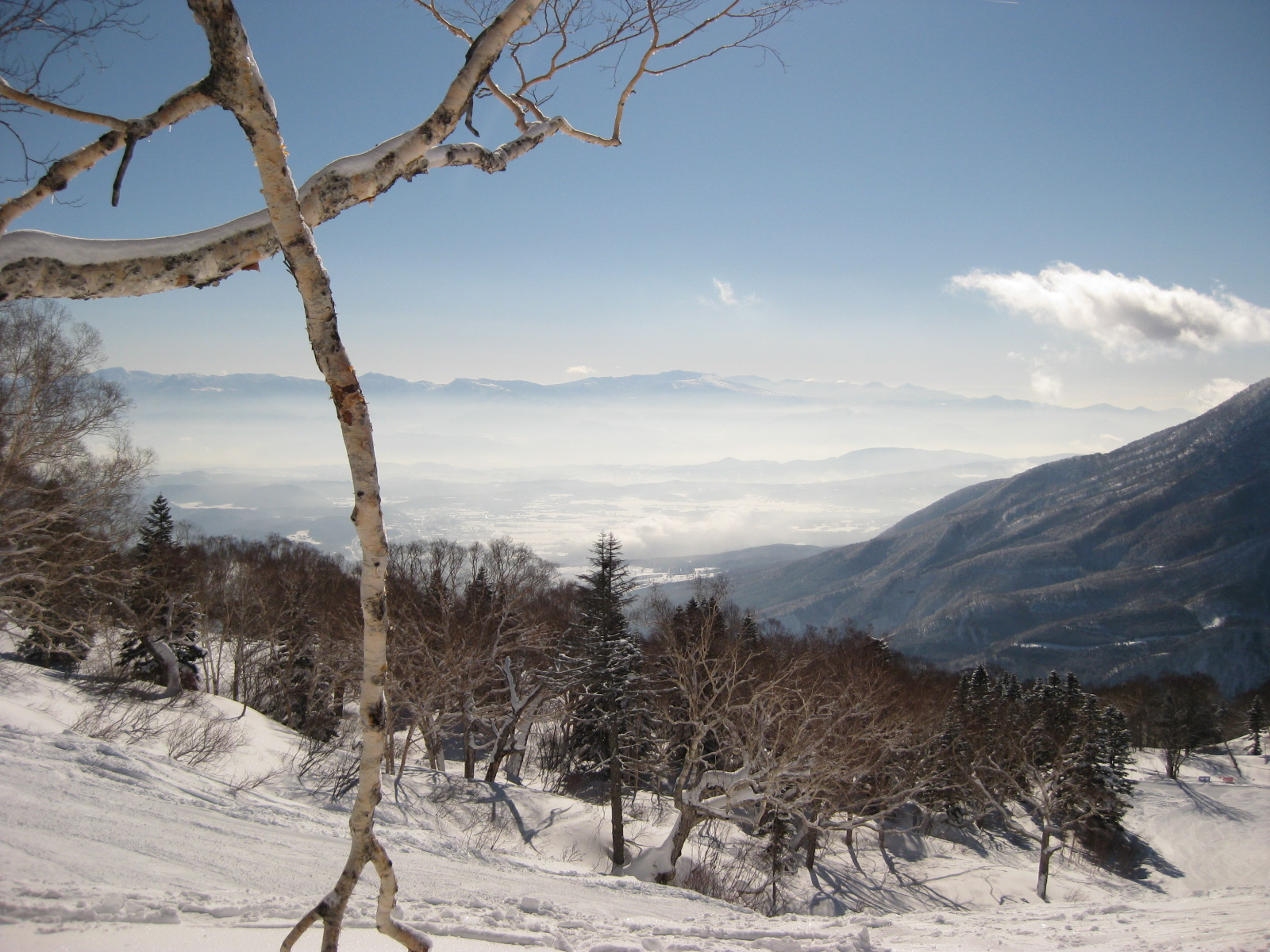 Myoko Snow Report 16 February 2015