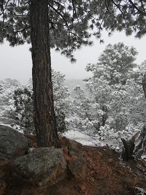 santa fe foothills snow