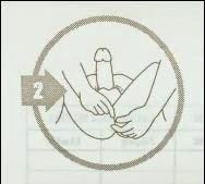 Tekhik Urut Memperbesar Penis Plus Gambar
