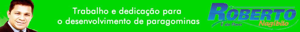 Vereador Roberto Nagibão