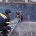 Άγιο είχε! Πυροσβέστες έσωσαν αδέσποτο που είχε εγκλωβιστεί σε κανάλι...