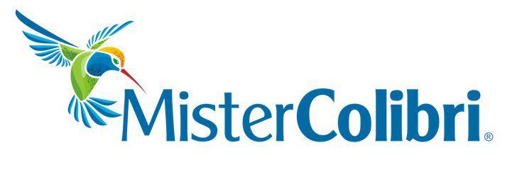 Trabalhe Online em Casa  LPs da Mister Colibri (O Golpe) c4bf8bf9426b5
