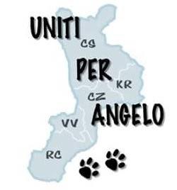 Urlo di Angelo!
