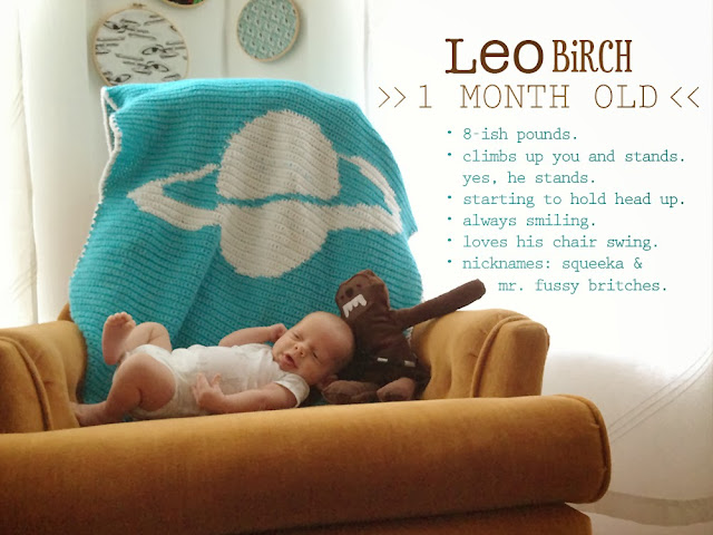 A monthly series to track the growth of baby. Include fun facts, like weight, nicknames or likes & dislikes to help you remember all those little milestones! via : oh, hopscotch!