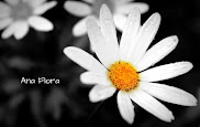 Ana Flora