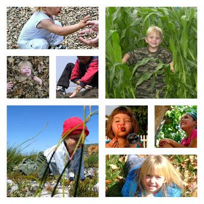 programming environmental education