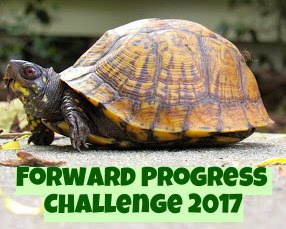 #forwardprogress2017