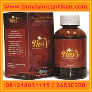 NESS V MINUMAN HERBAL KHUSUS WANITA CALL 081318031115