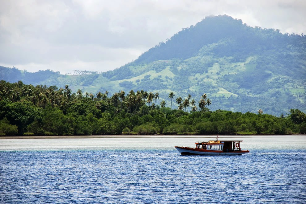 About the island Sulawesi in Indonesia