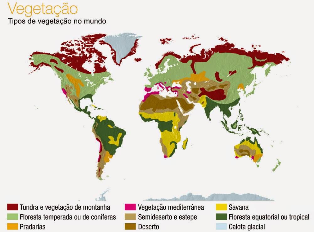 Vegetação mundial