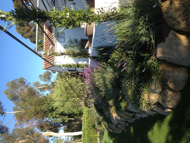 Carol Glasser In Montecito