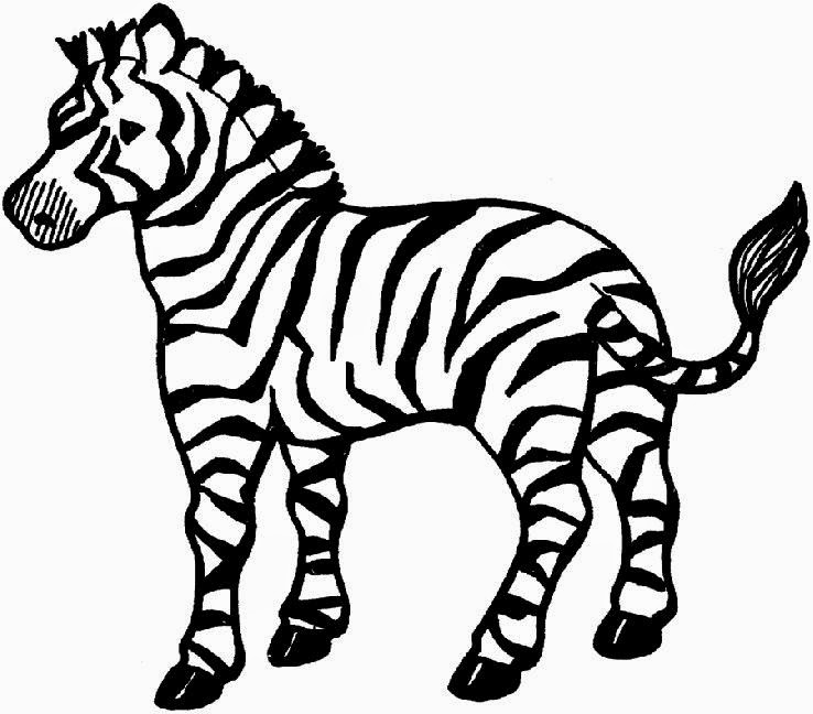 Zebra Pictures To Color | Free Coloring Pictures