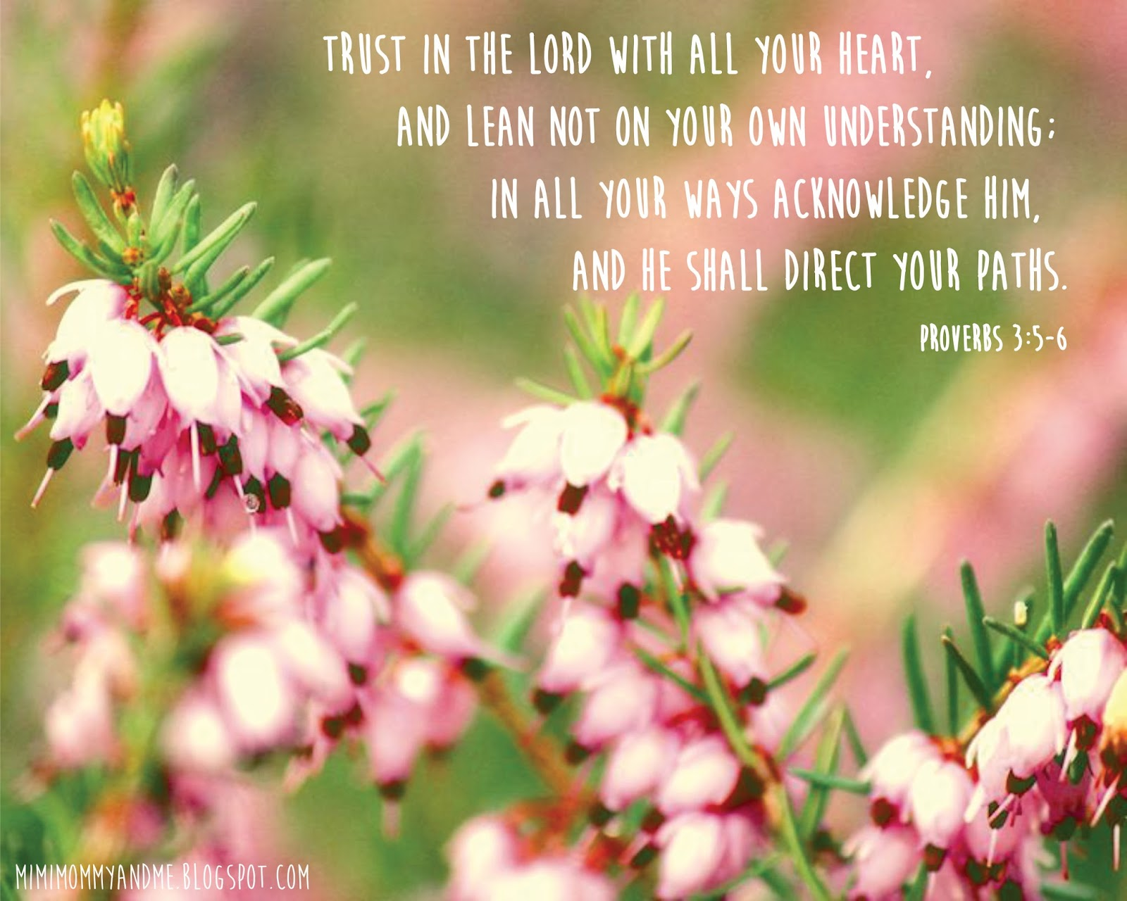 http://mimimommyandme.blogspot.com/2014/05/trust-in-lord-free-printable.html #bibleverse #freeprintable