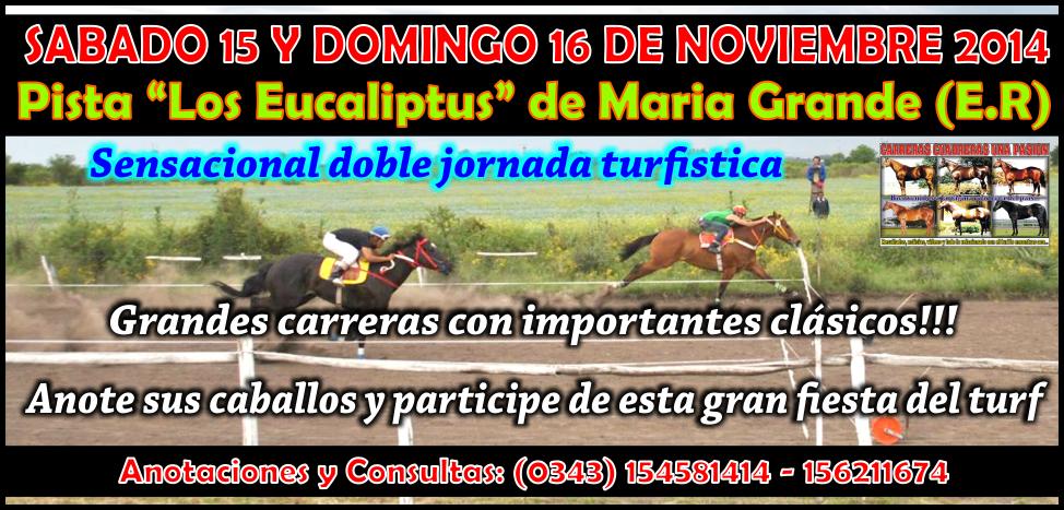 MARIA GRANDE - REUNION 15 Y 16.11.14