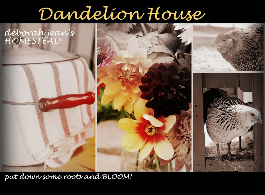deborah jean&#39;s DANDELION HOUSE and GARDEN  