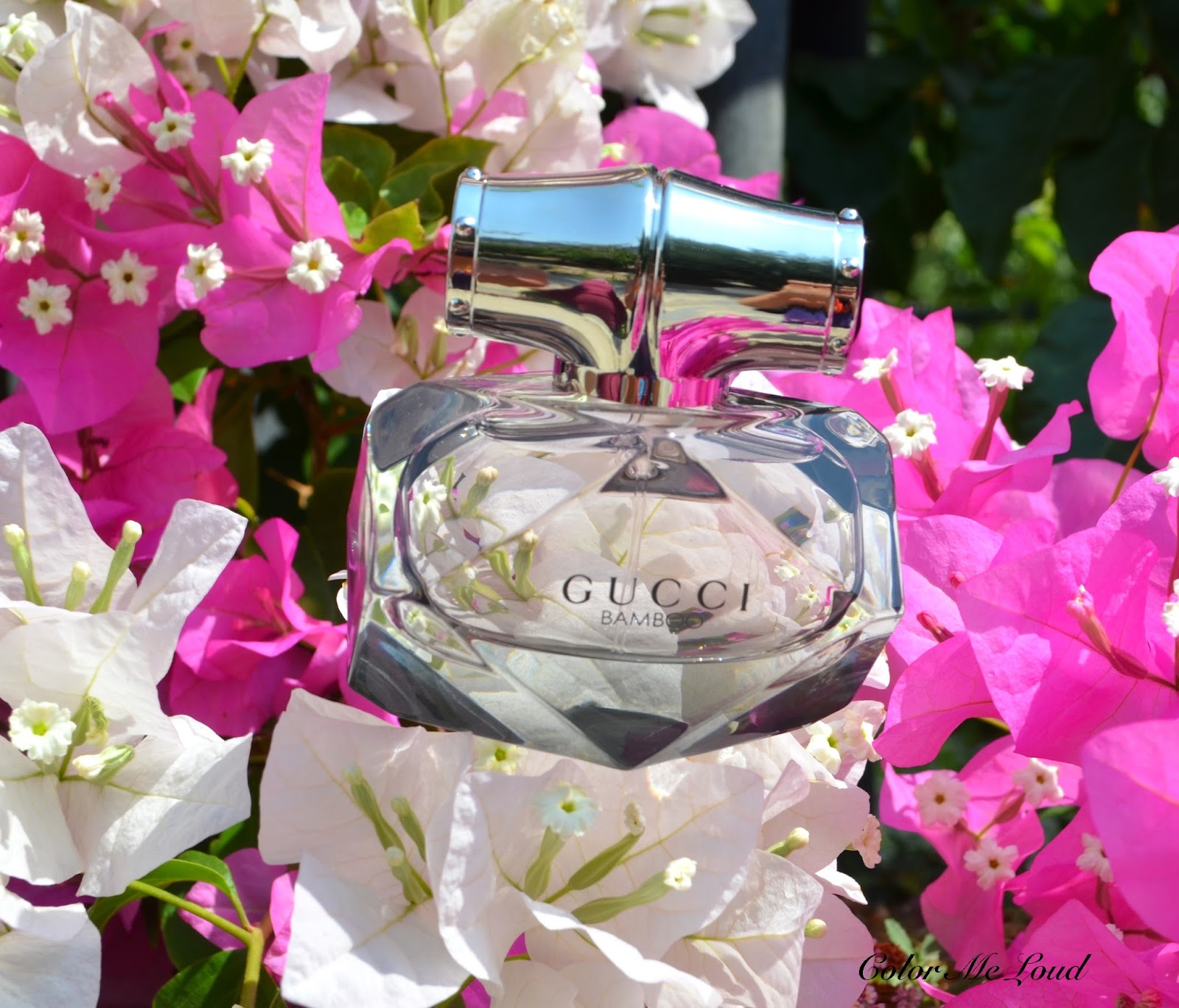 Gucci Bamboo Eau De Parfum Review Photos Color Me Loud
