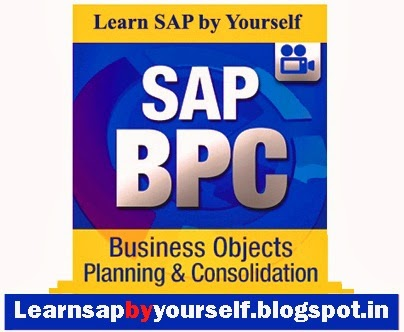 Learn SAP BPC by Yourself