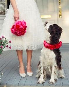 A Lowcountry Wedding Charleston Myrtle Beach Amp Hilton
