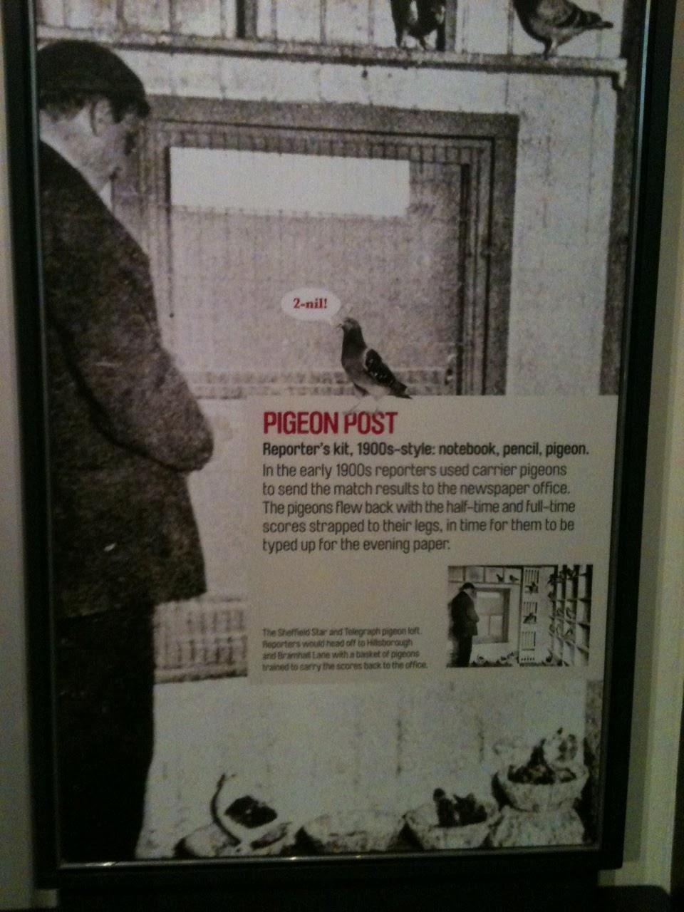 Dünyanın Güvercin (el yapımı kağıt): şeması