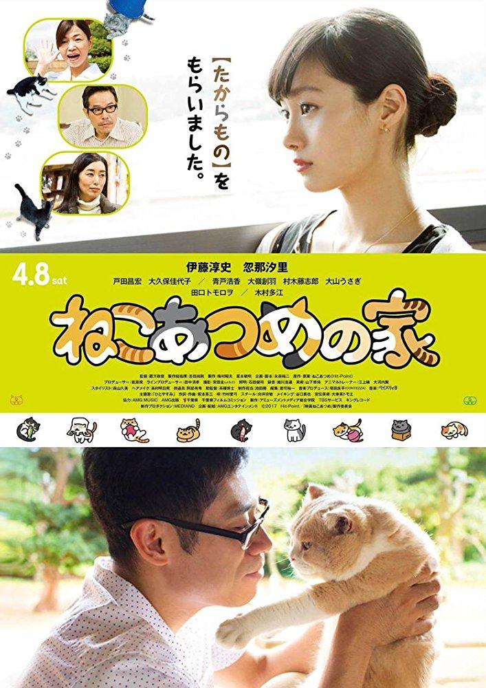 Cat Collection's House (Neko Atsume House)