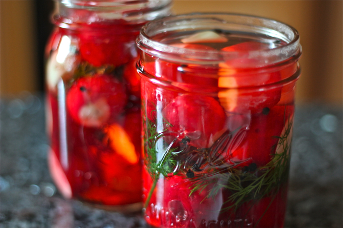 Pickled radishes: make and use | Yankee Kitchen Ninja