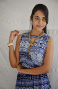 Khenisha Chandran at Jaganatakam press meet-thumbnail-8