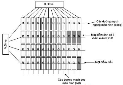 Hình 15 - Các điểm mầu trên màn hình được xếp xen kẽ theo phương ngang là RGB còn theo phương dọc là RRR hoặc GGG hoặc BBB