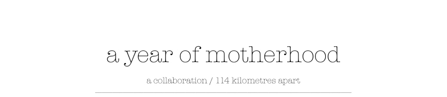 A Year of Motherhood