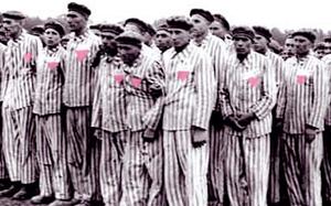 Nazis accuse german chancellor homosexual