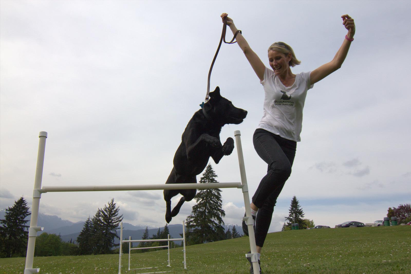 Shannon Dgu Dog Training