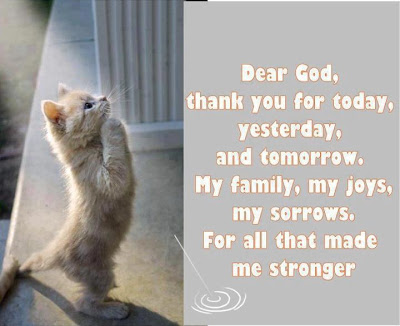 Dear god, thank you for today, yesterday, and tomorrow, my family, my joys, my sorrows, For all that made me stronger.