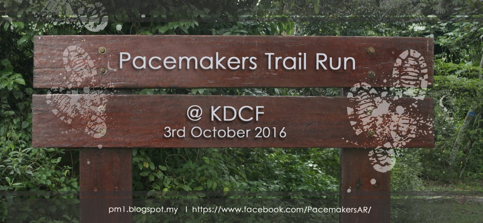 Pacemakers Trail Run 2016