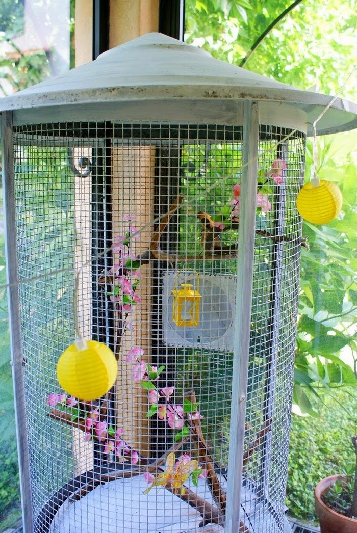 shabbychic birdcage diy home interiors voliera