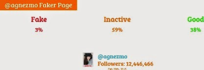 agnez mo fake followers