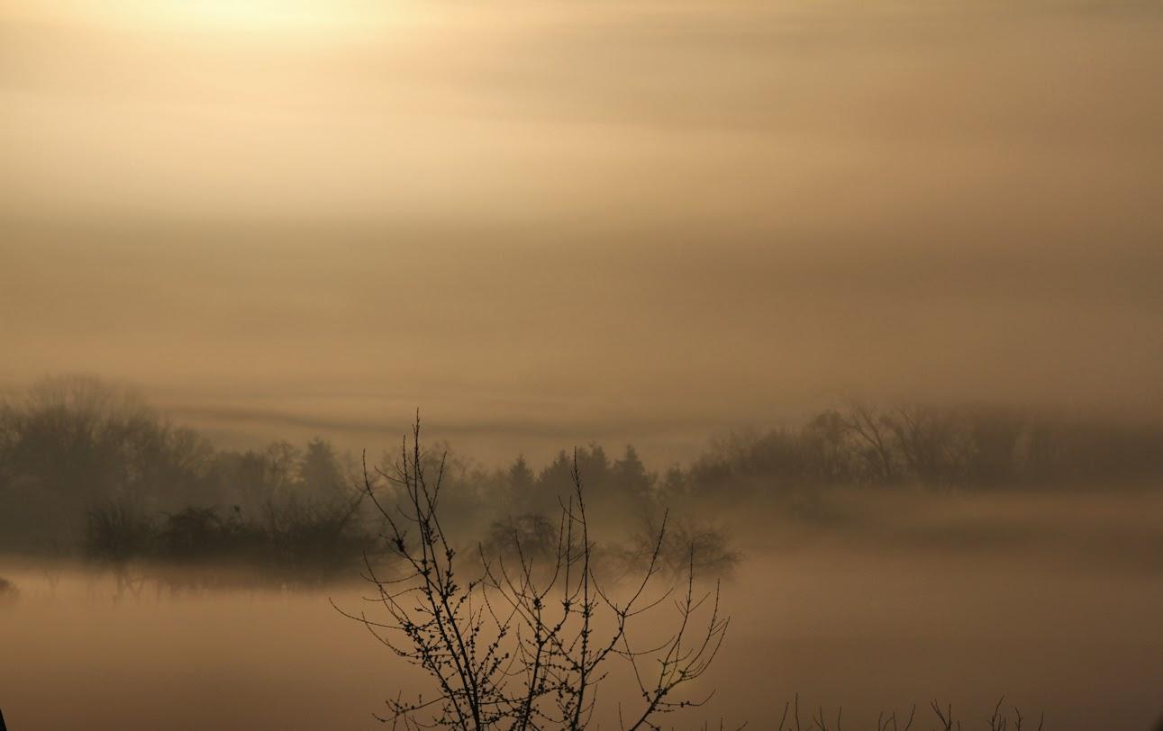 Nebel%2BMorgenIMG 4181