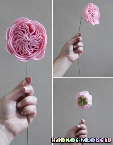 Английские розы из фетра