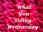 http://crochetaddictcfs.blogspot.de/2012/07/what-you-doing-wednesday-week-17.html