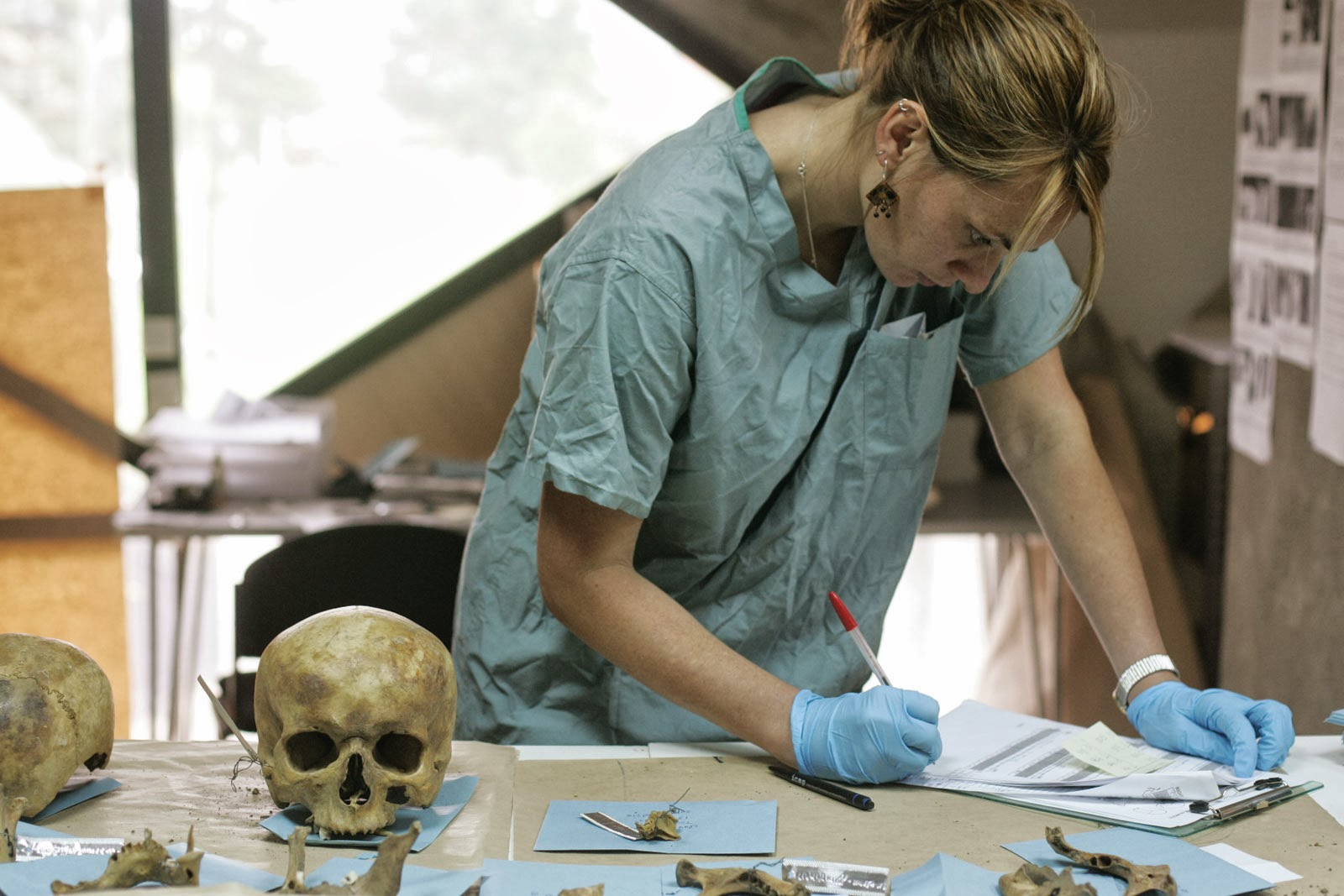 bones bodies behavior essays on biological anthropology Free anthropology papers, essays, and research papers  four areas,  sociocultural anthropology, biological/physical anthropology, archaeology, and  linguistics  to identify and analyze social, cultural, behavioural and  environmental factors in  she collects all kinds of bones so, she can contrive  and test ideas about the.