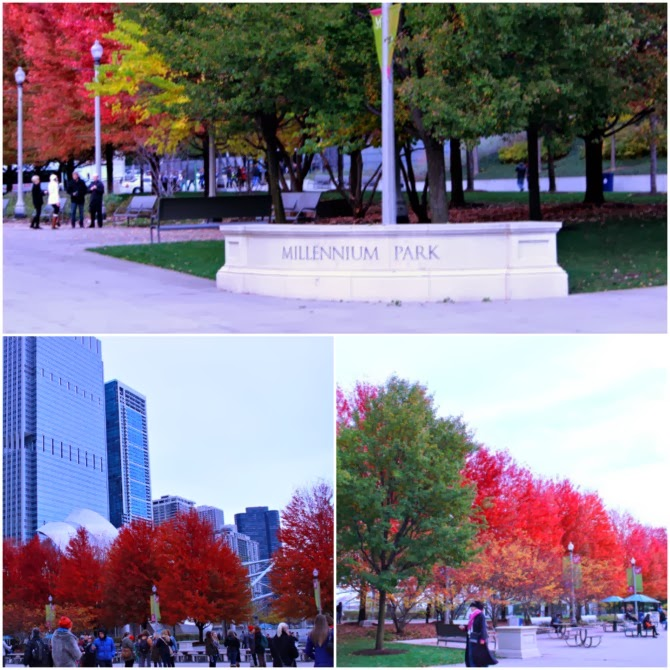Chicago, big city, city, fall, Millennium Park, day trip, train, Michigan City, Chicago trip, mother, daughter, trip