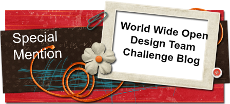 Winner World Wide Open DT Challenge