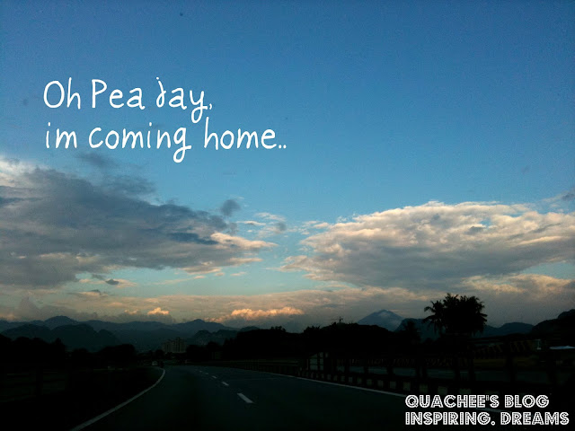 coming home, pj