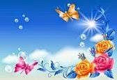 Das Leben Ist Bunt Einen Sonnentag Haben Wir Heute
