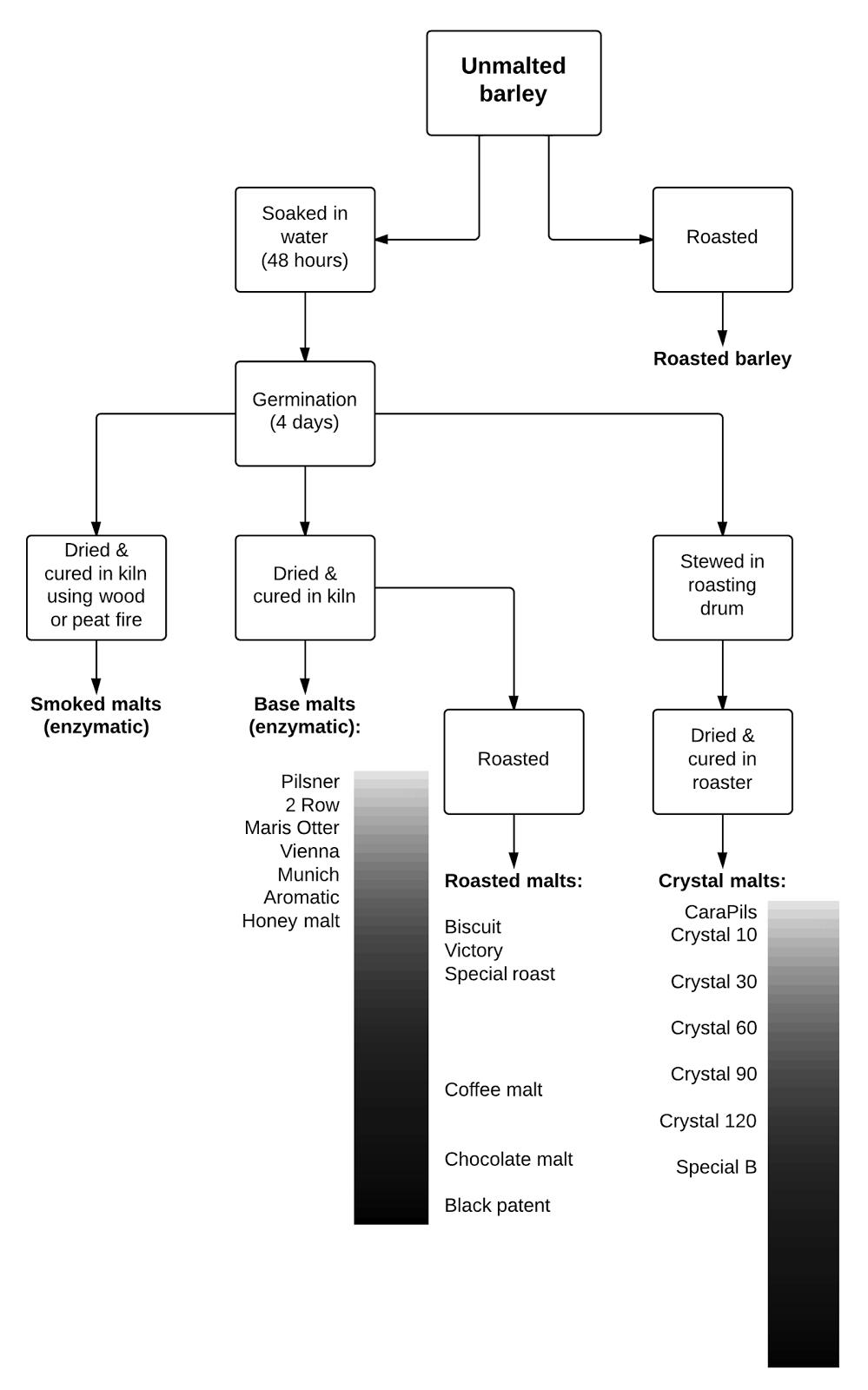 how to turn barley into malt
