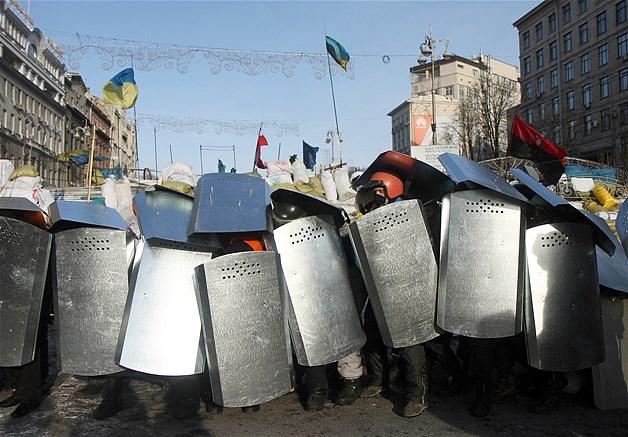 Ukrainian 'Turtle' formation